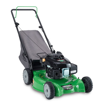 Small Engines (Lawn Mowers, etc.): Lawn Boy gas/oil mix, synthetic